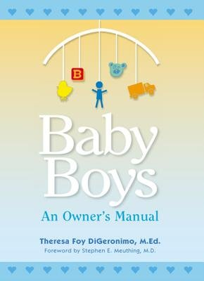 Baby Boys - An Owner's Manual (Electronic book text): Theresa Foy Digeronimo