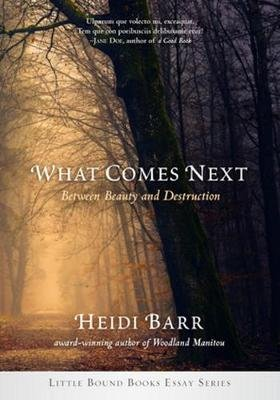 What Comes Next (Paperback): Heidi Barr