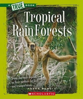 Tropical Rain Forests (Paperback): Peter Benoit