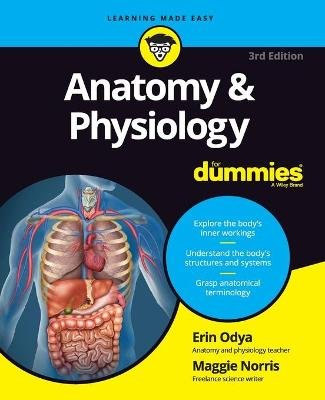 Anatomy & Physiology For Dummies (Paperback, 3rd Edition): Erin Odya, Maggie A Norris