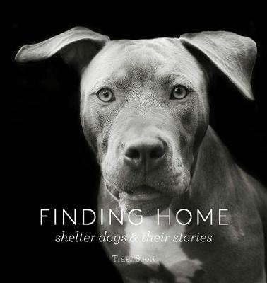 Finding Home (Hardcover): Traer Scott