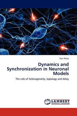 Dynamics and Synchronization in Neuronal Models (Paperback): Toni P. Rez, Toni Perez
