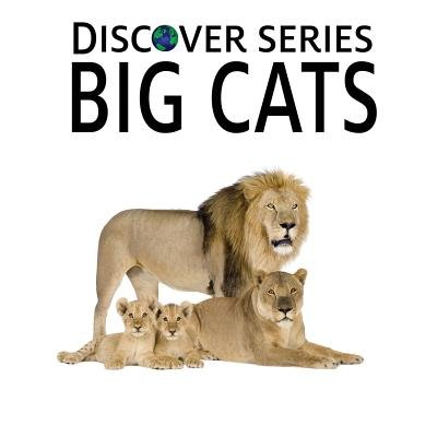 Big Cats - Discover Series Picture Book for Children (Paperback): Xist Publishing