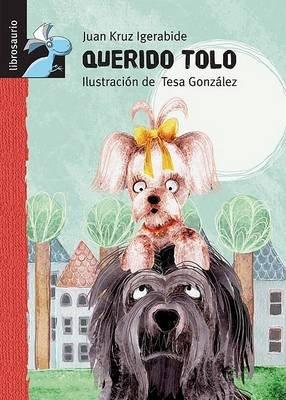 Querido Tolo (Spanish, Hardcover, 2nd): Juan Kruz, Juan Kruz Igerabide
