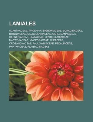 Lamiales - Acanthaceae, Avicennia, Bignoniaceae, Boraginaceae, Byblidaceae, Calceolariaceae, Carlemanniaceae, Gesneriaceae,...