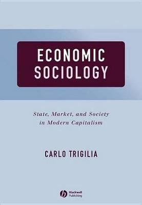 Economic Sociology - State, Market, and Society in Modern Capitalism (Electronic book text, 1st edition): Carlo Trigilia
