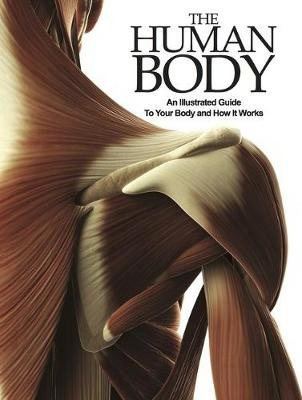 The Human Body - An Illustrated Guide To Your Body And How It Works (Paperback): Peter Abrahams