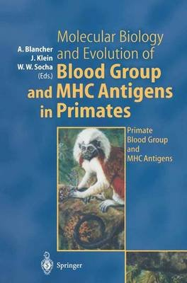 Molecular Biology and Evolution of Blood Group and MHC Antigens in Primates (Hardcover, illustrated edition): Antoine Blancher,...