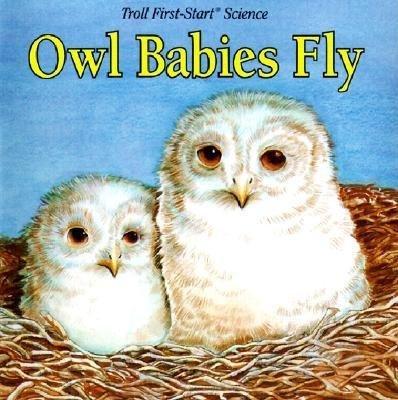 Owl Babies Fly (Hardcover): Janet Palazzo-Craig, Janet Craig