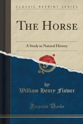 The Horse - A Study in Natural History (Classic Reprint) (Paperback): William Henry Flower