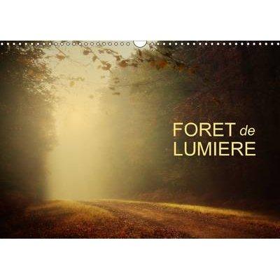 Foret De Lumiere 2017 - Magie De L'ombre Et De La Lumiere Au c/Ur De La Foret (French, Calendar, 2nd edition): Dominique...