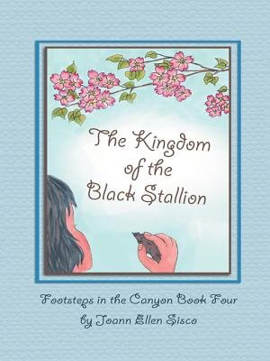 The Kingdom of the Black Stallion - 4 (Electronic book text): Joann Ellen Sisco