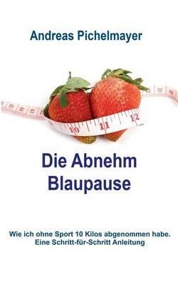 Die Abnehm Blaupause (German, Paperback): Andreas Pichelmayer
