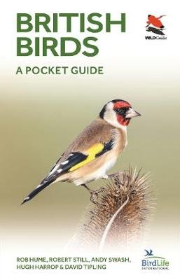British Birds - A Pocket Guide (Paperback): Rob Hume, Robert Still, Andy Swash, Hugh Harrop, David Tipling