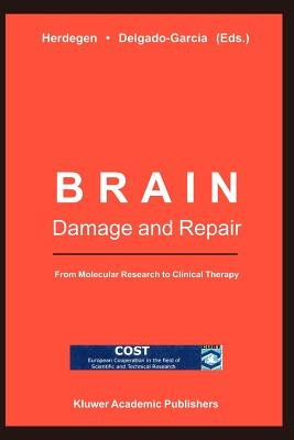 Brain Damage and Repair - From Molecular Research to Clinical Therapy (Paperback, Softcover of orig.1ed. 2004): T. Herdegen, J....