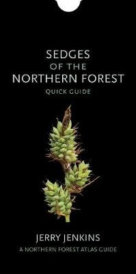 Sedges of the Northern Forest - Quick Guide (Fold-out book or chart): Jerry Jenkins