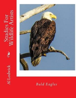 Bald Eagles - Studies for Wildlife Artists (Paperback): Al Lodwick