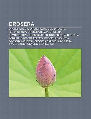 Drosera - Drosera Regia, Drosera Anglica, Drosera Rotundifolia, Drosera Binata, Drosera Erythrorhiza, Drosera Secc....