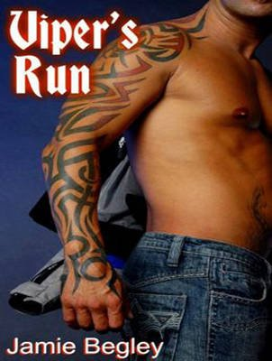 Viper's Run (Standard format, CD, Library ed): Jamie Begley