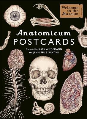 Anatomicum Postcard Box (Cards): Katy Wiedemann