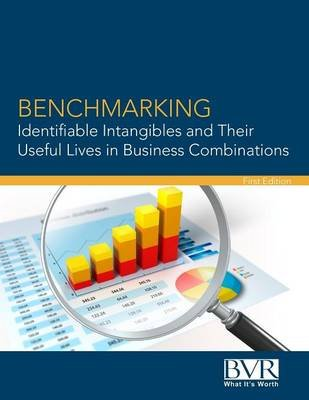 Benchmarking Identifiable Intangibles and Their Useful Lives in Business Combinations (Paperback): Randy Cochran