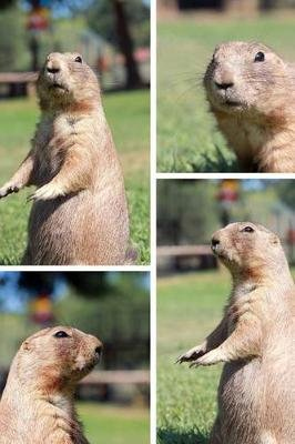 The Prairie Dog Bunch Journal - 150 Page Lined Notebook/Diary (Paperback): Cool Image