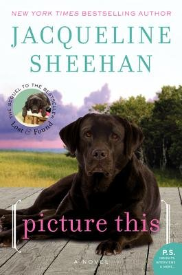 Picture This (Electronic book text): Jacqueline Sheehan