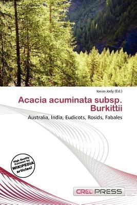 Acacia Acuminata Subsp Burkittii Paperback Iosias Jody