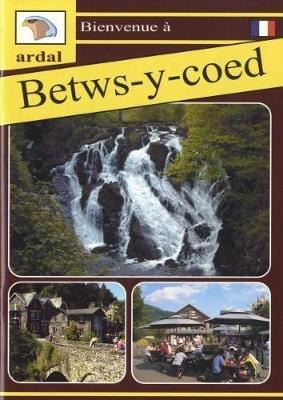 Bienvenue - Betws-y-Coed (Ffrangeg) (Paperback): Owain Maredudd