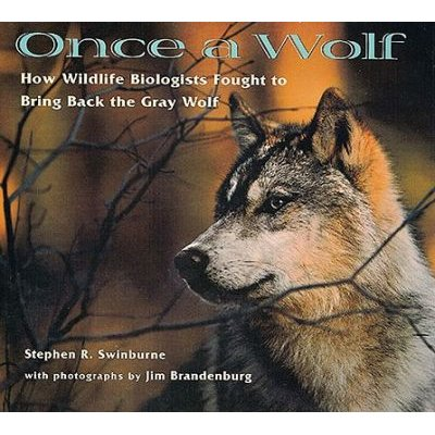 Once a Wolf - How Wildlife Biologists Fought to Bring Back the Gray Wolf (Hardcover, Turtleback Scho): Stephen Swinburne...