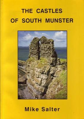 The Castles of South Munster (Paperback): Mike Salter
