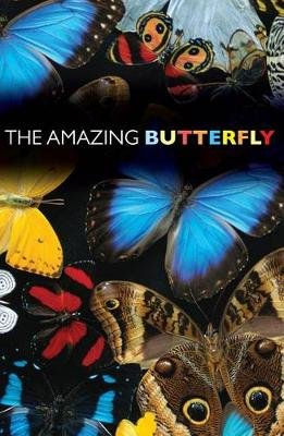 The Amazing Butterfly (Pack of 25) (Pamphlet): Good News Publishers