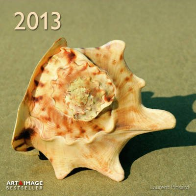 2013 A&I Beach Treasures Grid Calendar (Calendar):