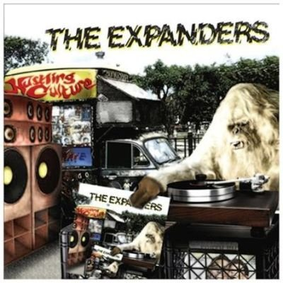 The Expanders - Hustling Culture (Vinyl record): The Expanders