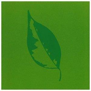 Rafael Toral - Cyclorama Lift 3 (CD): Rafael Toral