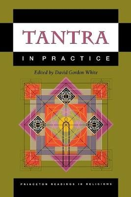 Tantra in Practice (Paperback): David Gordon White