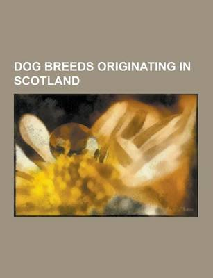 Dog Breeds Originating in Scotland - Bearded Collie, Bloodhound, Blue Paul Terrier, Border Collie, Border Terrier, Cairn...