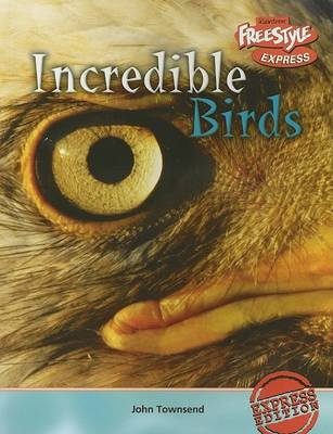 Incredible Birds (Paperback): John Townsend
