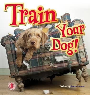Train Your Dog (Paperback): Sharon Parsons