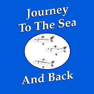 Journey to the Sea and Back (Paperback, illustrated edition): Art Saltz