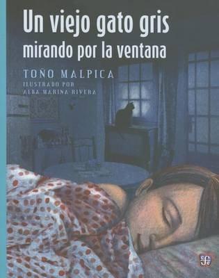 Un Viejo Gato Gris Mirando Por La Ventana (English, Spanish, Paperback): Too Malpica