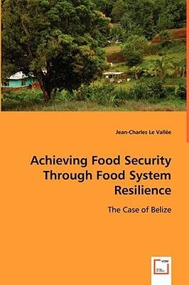 Achieving Food Security Through Food System Resilience (Paperback): Jean-Charles Le Vallee