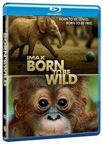 IMAX: Born to Be Wild (Blu-ray disc): Drew Fellman, Mark Mothersbaugh, David Douglas, Morgan Freeman, Birute Galdikas, Daphne...