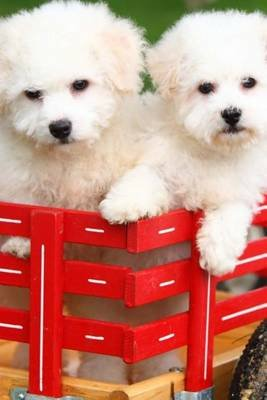 Journal - Bichon Frise Puppies (Paperback): Plain &. Simple Books