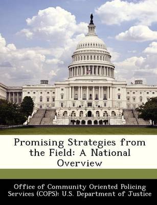 Promising Strategies from the Field - A National Overview (Paperback):
