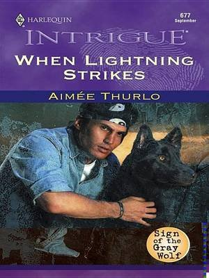 When Lightning Strikes (Electronic book text): Aim ee Thurlo