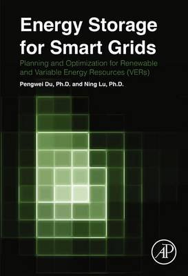 Energy Storage for Smart Grids (Electronic book text): Pengwei Du, Ning Lu