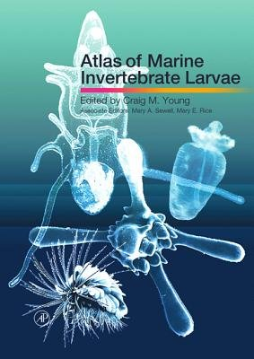 Atlas of Marine Invertebrate Larvae (Electronic book text): Craig M. Young, Mary A. Sewell, Mary E. Rice