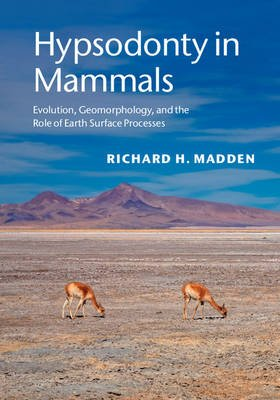 Hypsodonty in Mammals - Evolution, Geomorphology, and the Role of Earth Surface Processes (Hardcover): Richard H. Madden