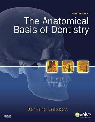 The Anatomical Basis of Dentistry (Electronic book text, 3rd ed.): Bernard Liebgott